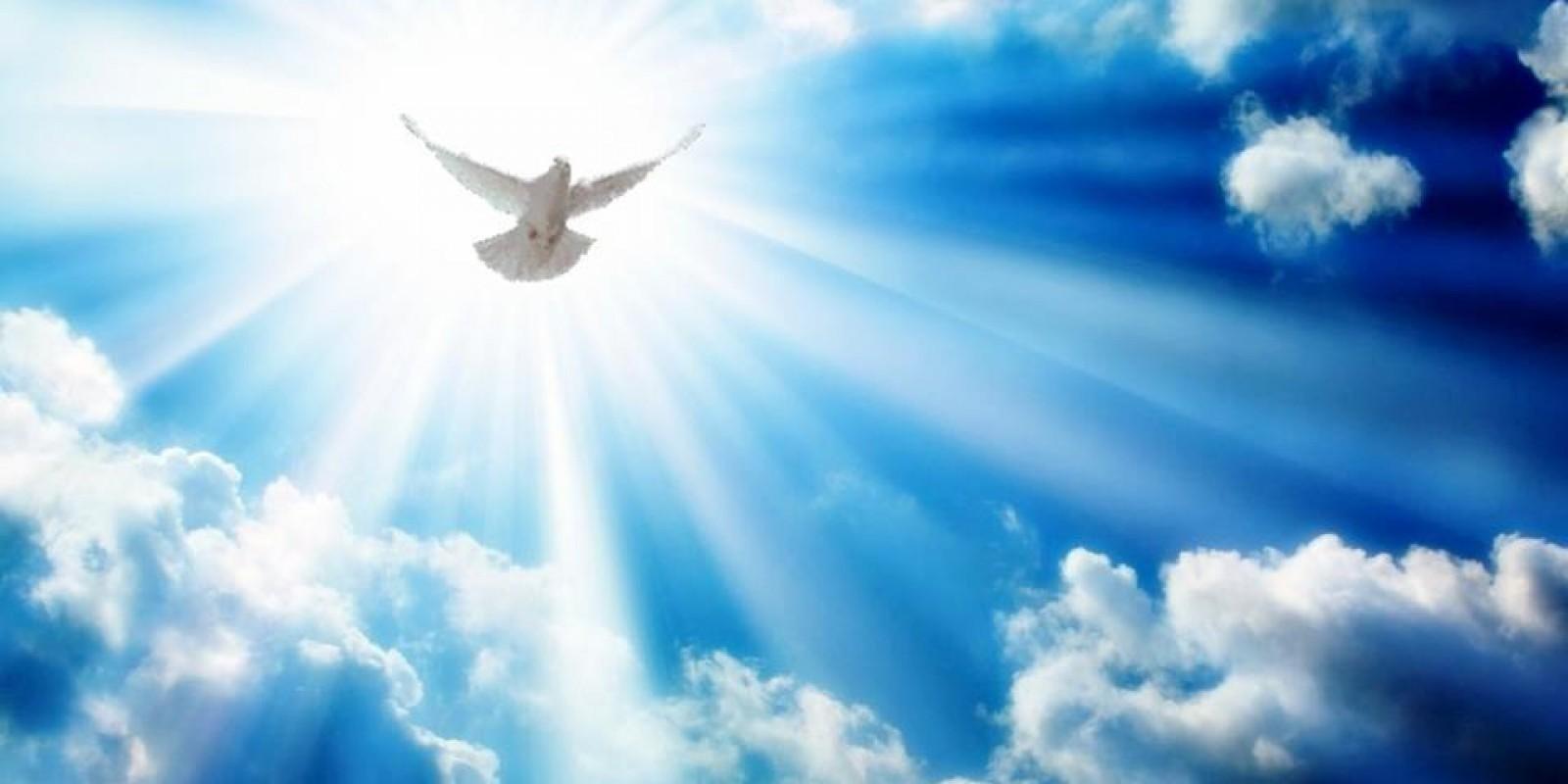 Em estando com o Espírito Santo as mudanças em tua vida podem parecer desfavoráveis, mas na verdade são o campo da multiplicação